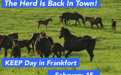 Second Annual KEEP Day in Frankfort to be Held February 15
